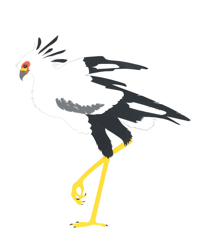 Carmen Martin, Art Things: Sketchbook. Secretary Bird.