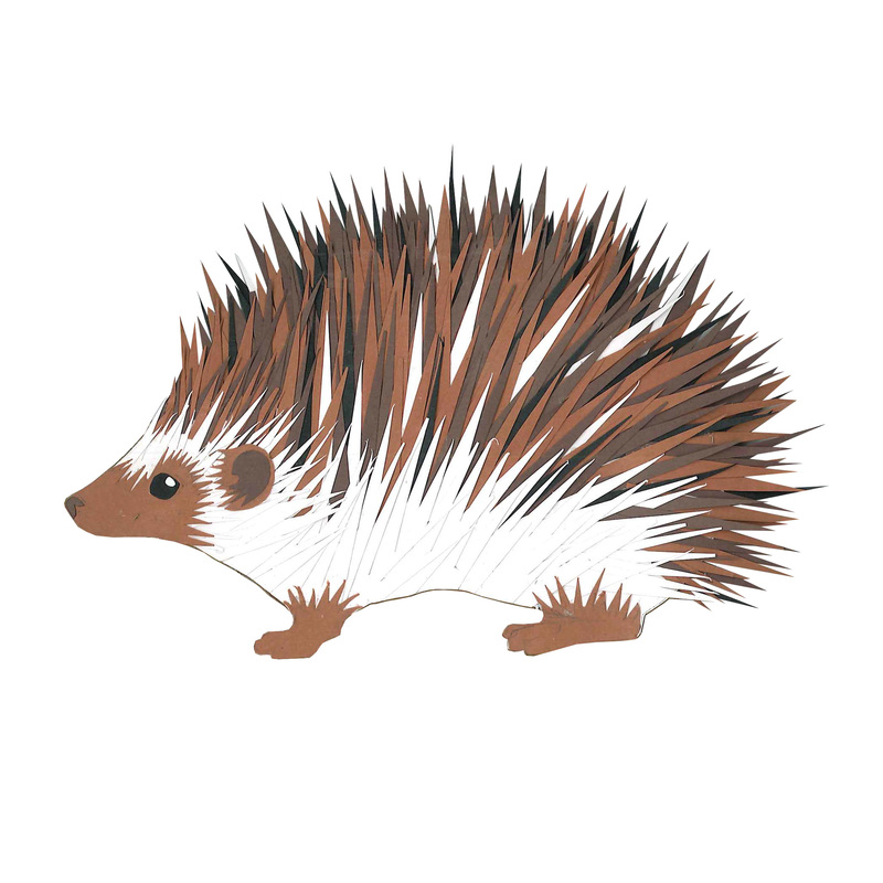 Carmen Martin, Art Things: Sketchbook. Hedgehog